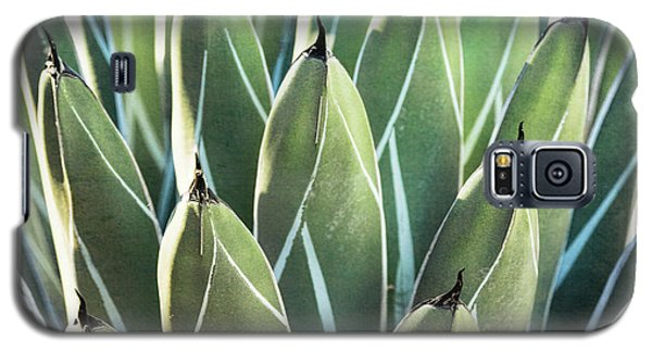 Galaxy S5 Case featuring the photograph Wall Of Agave  by Saija Lehtonen