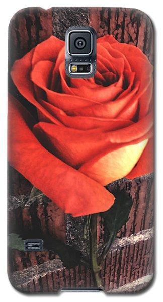 Wallflower Galaxy S5 Case