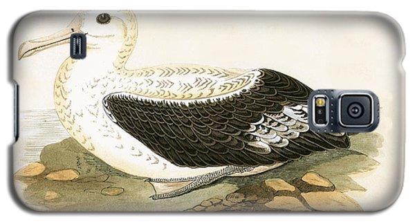Wandering Albatross Galaxy S5 Case by English School