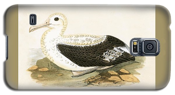 Wandering Albatross Galaxy S5 Case