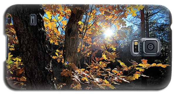 Galaxy S5 Case featuring the photograph Waning Autumn by Gary Kaylor