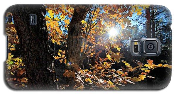 Waning Autumn Galaxy S5 Case