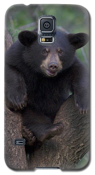 Galaxy S5 Case featuring the photograph Wanna Wrestle by Gerry Sibell