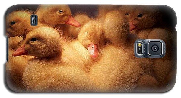 Warm And Fuzzy Galaxy S5 Case