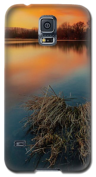 Warm Evening Galaxy S5 Case