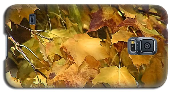 Warm Fall Leaves Galaxy S5 Case by Michael Flood