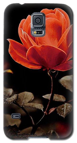 Warm Sepia Rose Galaxy S5 Case