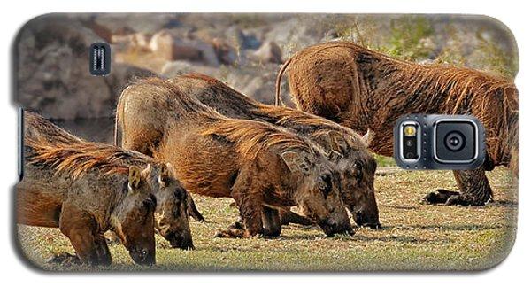 Warthogs Doing Lunch Galaxy S5 Case by Joe Bonita