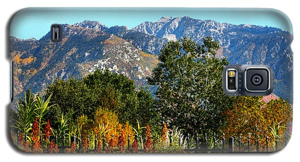 Wasatch Mountains In Autumn Galaxy S5 Case by Tracie Kaska