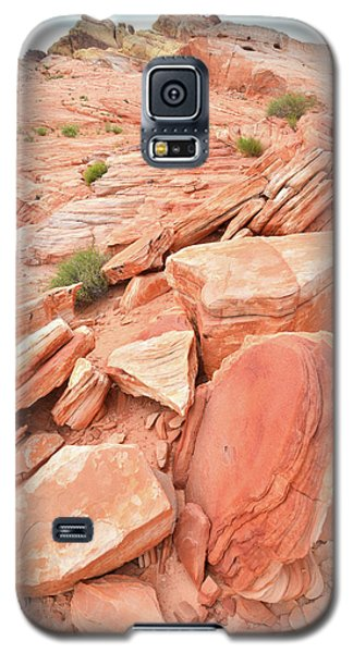 Galaxy S5 Case featuring the photograph Wash 4 Color In Valley Of Fire by Ray Mathis
