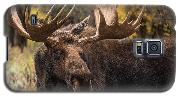 Washakie In The Autumn Beauty Galaxy S5 Case