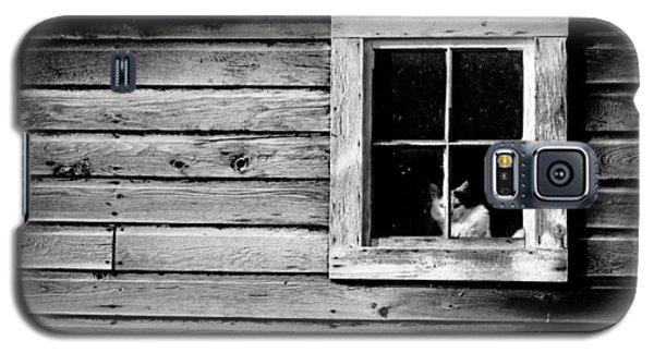 Watch Cat Galaxy S5 Case