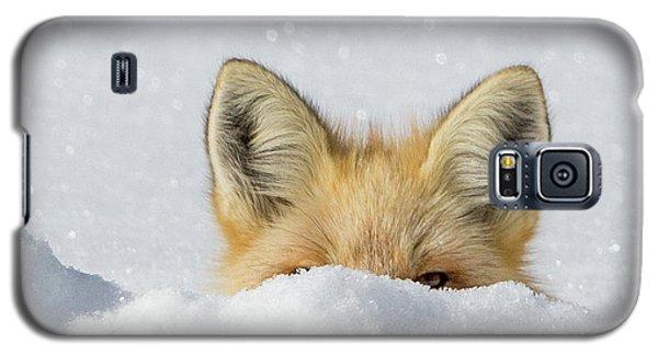 Watchful Eye Galaxy S5 Case