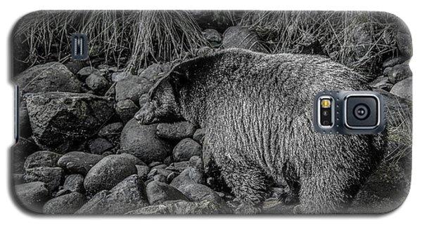 Watching Black Bear Galaxy S5 Case