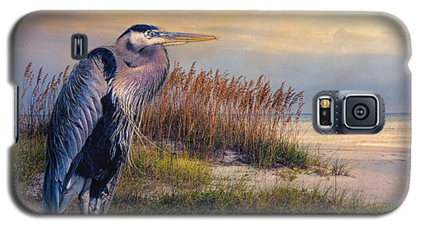 Watching The Sun Go Down Galaxy S5 Case by Brian Tarr