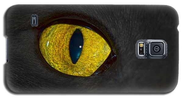 Watching You Galaxy S5 Case by Shane Bechler