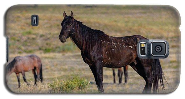 Watchman  Galaxy S5 Case
