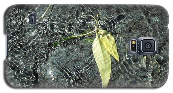 Water And Leaves Galaxy S5 Case