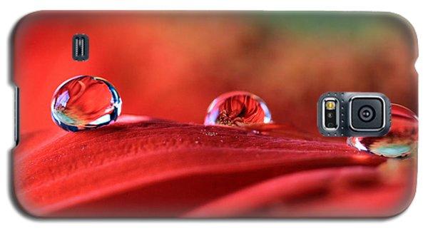 Water Drop Reflections Galaxy S5 Case by Angela Murdock