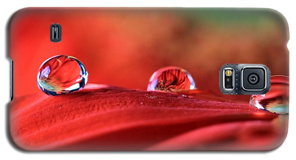 Water Drop Reflections Galaxy S5 Case