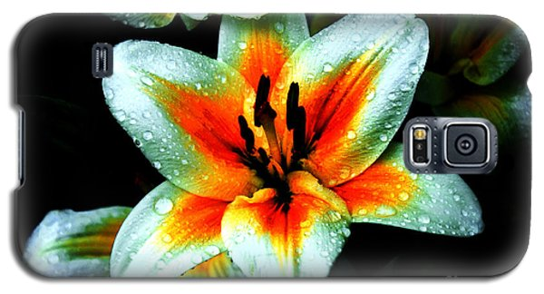 Water Droplet Covered White Lily  Galaxy S5 Case