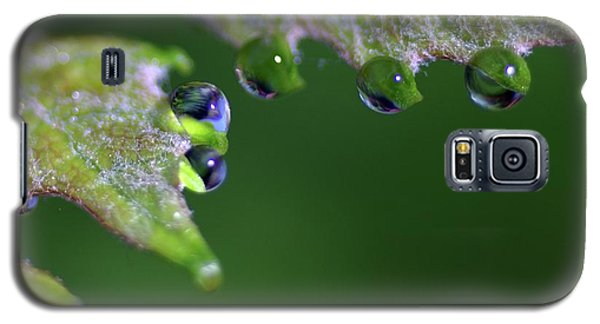 Galaxy S5 Case featuring the photograph Water Droplet IIi by Richard Rizzo