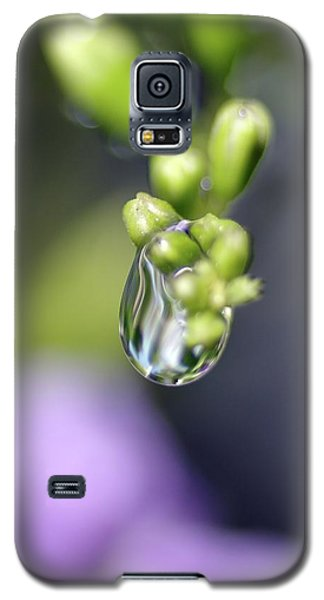 Galaxy S5 Case featuring the photograph Water Droplet Iv by Richard Rizzo