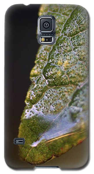 Galaxy S5 Case featuring the photograph Water Droplet V by Richard Rizzo
