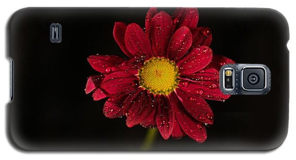 Galaxy S5 Case featuring the photograph Water Drops On A Flower by Jeff Swan
