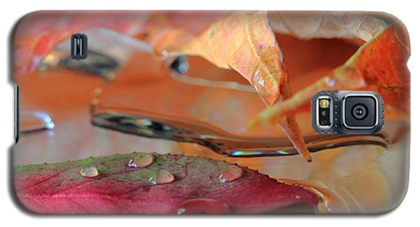 Water Drops On Autumn Leaves Galaxy S5 Case