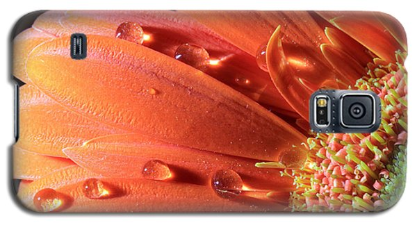 Water Drops On Colorful Flower Petals Galaxy S5 Case