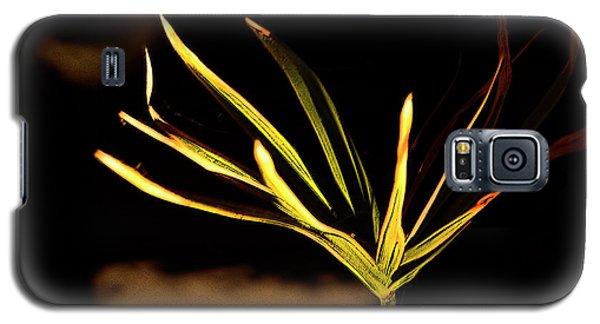 Water Grass Galaxy S5 Case