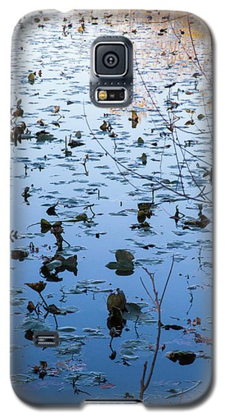 Water Lilies Autumn Song Galaxy S5 Case