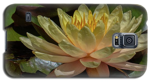 Water Lily 1 Galaxy S5 Case