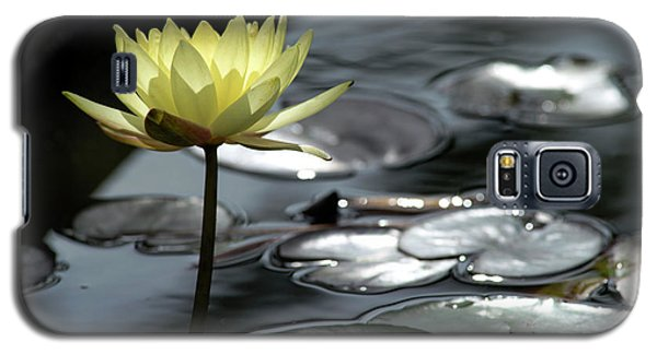 Water Lily And Silver Leaves Galaxy S5 Case