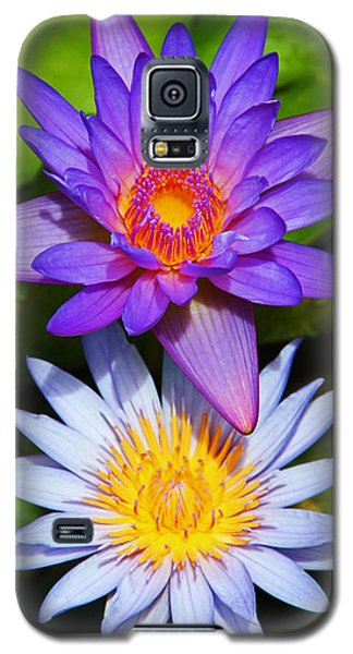 Water Lily Blossoms Galaxy S5 Case
