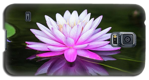 Water Lily Galaxy S5 Case