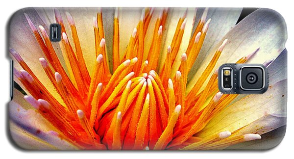 Water Lily Flower Galaxy S5 Case