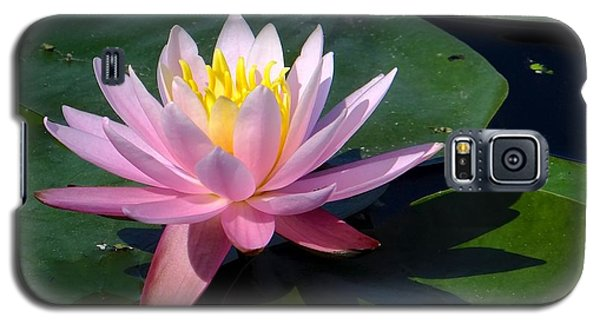 Water Lily In Mountain Lake Galaxy S5 Case
