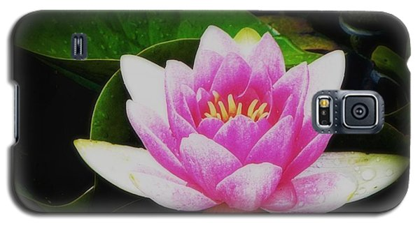 Galaxy S5 Case featuring the photograph Water Lily by Karen Shackles