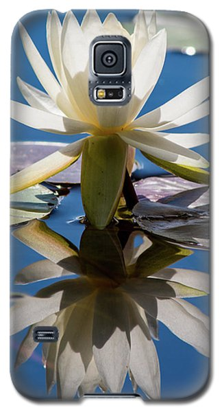 Galaxy S5 Case featuring the photograph Water Lily by Mary Hone