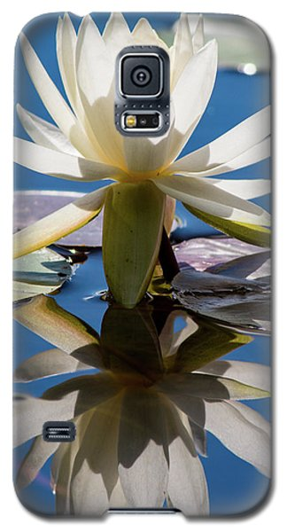 Water Lily Galaxy S5 Case by Mary Hone