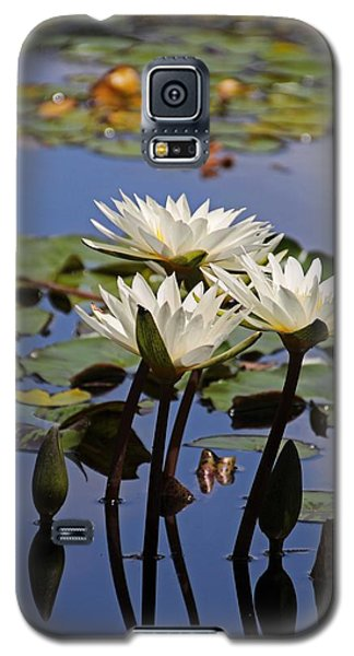 Water Lily Reflections Galaxy S5 Case