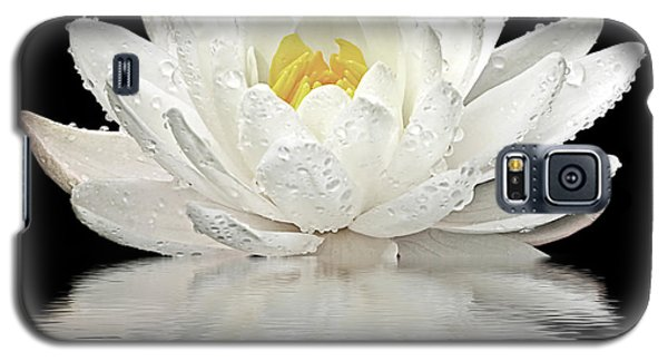 Water Lily Reflections On Black Galaxy S5 Case by Gill Billington