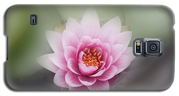 Water Lotus Flower Galaxy S5 Case