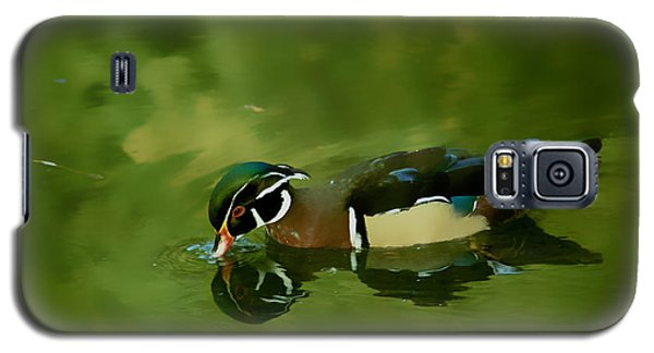 Male Wood Duck Water Reflections Galaxy S5 Case