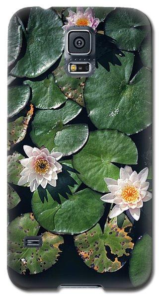 Water Triad Galaxy S5 Case