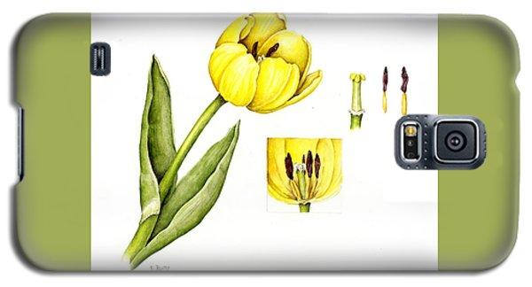 Watercolor Flower Yellow Tulip Galaxy S5 Case