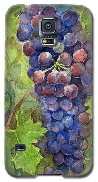 Watercolor Grapes Painting Galaxy S5 Case by Olga Shvartsur