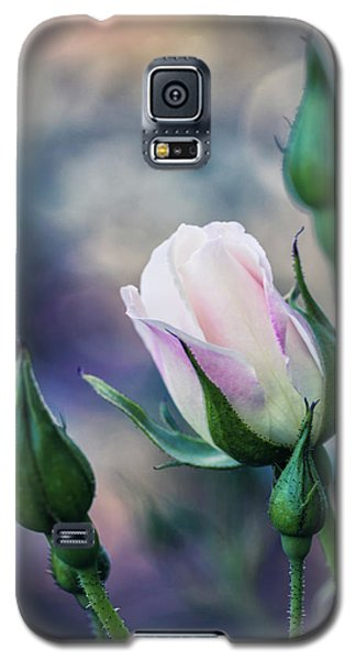 Watercolor Rose Galaxy S5 Case